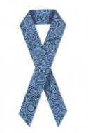 BluePaisleyRibbon-198x3002